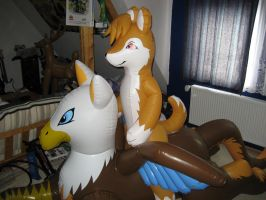 Inflatable anthro husky on gryphon by schorse1000