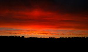 sunrise-cell phone by acollins973