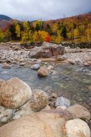 White Mountains  Fall Foliage  024 by FairieGoodMother