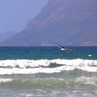Sea and Tablemountain SA I by Jenvanw