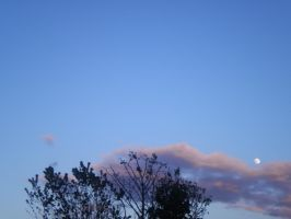 Almost Full by NeepTheSheep