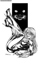 2004 Black Cat by BrandonPeterson