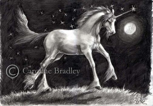 Painting the sky with stars by carolinebradley