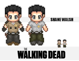 The Walking Dead : Shane Walsh by IzId0r