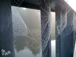 Spiderwebs by Mamselli