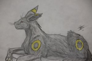 Umbreon by Shiver1224
