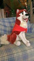 Balto Jenna Plush by BlueDreamerr