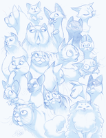 Collection of Cats by shelzie