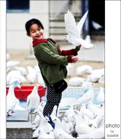 gal and pigeon2 by lbda668