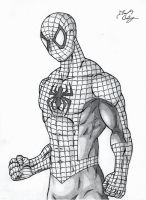 Spider-Man Original Costume by dsx100