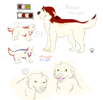 Hazel Reference by Jekal