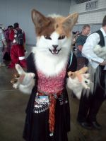 AnthroCon 2012: Ember by murkrowzy