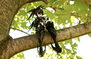 Insane BRS Upon a Tree by Solastyre