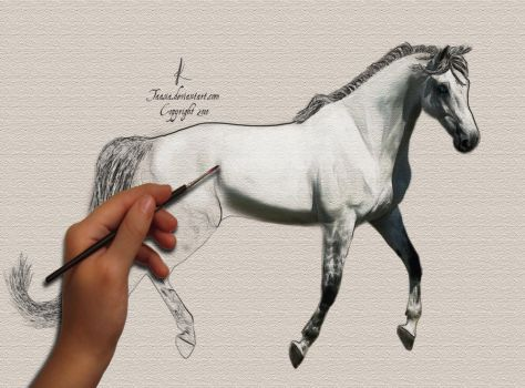 For the love of horses by taasia