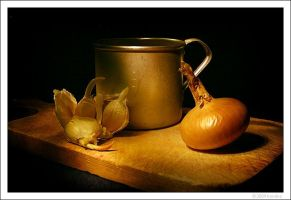 Still Life with onion by kovalvs