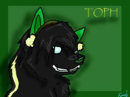Toph Wolfy for K.C by Emi-Is-I