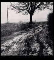 Muddy road by Dionisic