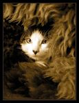 180 by evy-and-cats