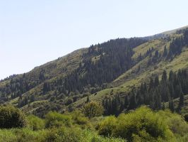 Green Mountains of Kyrgyzstan by Silver1bow