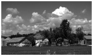Bw country by netherl