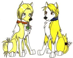 Annie Leonhardt and Riza Hawkeye Wolves Crossover by xMaikoWolfx