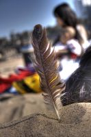 feather by jeffreyhing