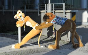 010 Sofia Lioness at EF16 by basil-lion