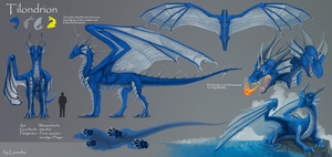 Reference sheet: Tilondrion by Leundra