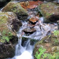 Waterfall in Miniature by Brian-B-Photography