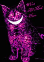Smile Like A Cheshire Cat by silverwhitepinions