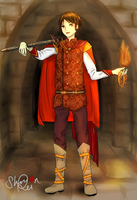 OC--prince of the earth element of fire by Shou-rei-on