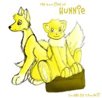 Two sides of Hunnie by tamarii
