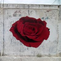 and the Rose -Street Art from the Little Prince - by Johnny-Aza
