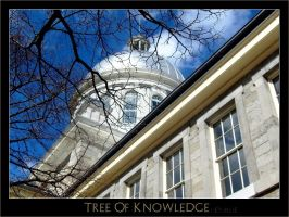 Tree Of Knowledge by Heymilie
