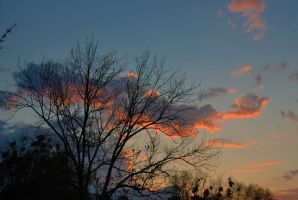 Morning Sky 3-17-12 by Tailgun2009