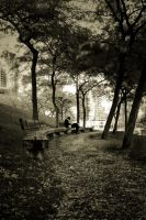 Afternoon in the Park by JGDA9RS