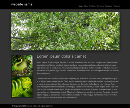 Web Template #99 by Jijarine