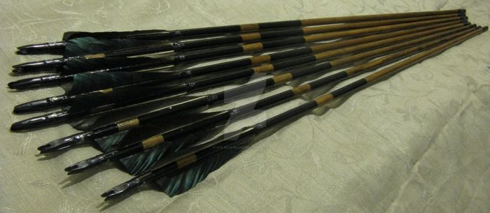 Training arrows for traditional bow, black set by Aylie-Serinde