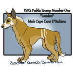 SOLD/Gone from Kennel by WinchesterCrossroads
