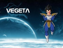 Vegeta Wallpaper by SonGohan10