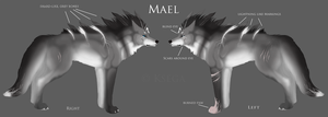 Mael Reference by marangai
