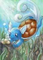 Hero of the day - Wartortle by xxDarkDustxx