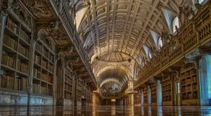 the library - portugal, mafra by acseven