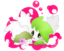 : Shaymin : by ToxiicClaws