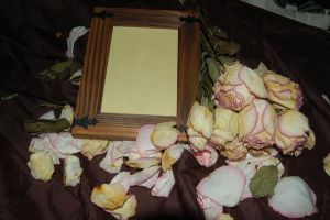 Roses_and_Frame_3 by haunted-shadows17