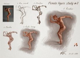 Female figure study 3 by Olekir