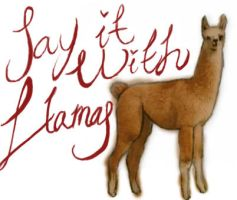 Say it with llamas by Zetsubou--chan