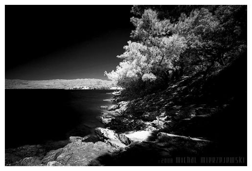 black and white by werol