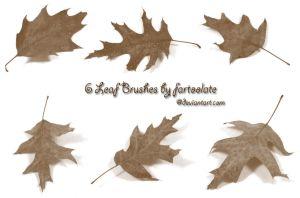 6 Leaf Brushes by fartoolate