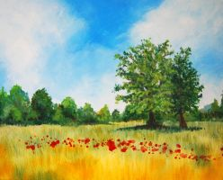 Terrible Poppy Field by mr-macd